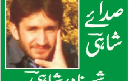 عوامی ایکشن کمیٹی، وفاقی حکومت اور مہدی شاہ کے اختیارات