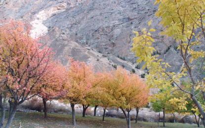 چترال میں موسمِ سرما کا آغاز، درختوں کے پتے جھڑکنے لگے جبکہ سیب کے درختوں میں موجود پھل فطرت کے انعامات کی گواہی دے رہی ہے