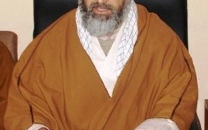 عوامی امنگوں کے مطابق گلگت بلتستان کو آئینی حقوق دئیے جائیں، آغا علی رضوی