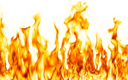 گوہر آباد دیامر کے جنگل میں لگی آگ پر قابو پالیا گیا، وجہ معلوم کرنے کے لئے تحقیقات کا آغاز