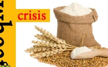 وزیراعلیٰ وفاق سےریزرومیں رکھے ہوئے75ہزاربوری گندم ریلزکرانے کے لیے اپناکردار ادا کرے ۔ رہنماتحریک انصاف راجہ جہانزیب