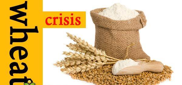 ہنزہ نگر: گندم کا بحران شدید شکل اختیار کر گیا