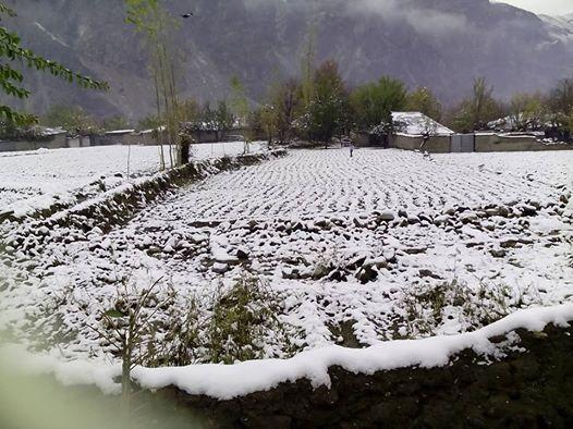 چترال میں جمعہ کے روز بھی بعض مقامات پر بارش اور برفباری ہوئی،موسم مزید سرد ہوگیا