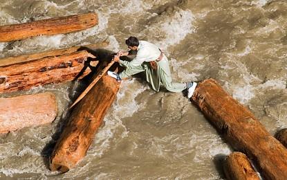 چترال، سوختنی لکڑی کی فی من سرکاری قیمت 380روپے ہے، لیکن فروخت ہو رہی ہے فی من 550سے600روپے تک