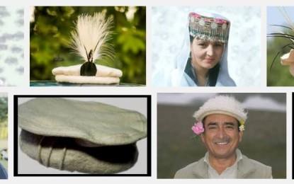 گلگت بلتستان میں سرکاری سطح پر ثقافتی ٹوپی ڈے منانے کا فیصلہ