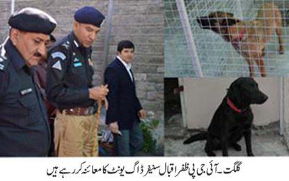 گلگت بلتستان پولیس میں سنیفر ڈاگ یونٹ کا قیام عمل میں لایا گیا، دھاکمہ خیز مواد اور ایمونیشن کھوجنے کی صلاحیت رکھنے والے کتے شامل