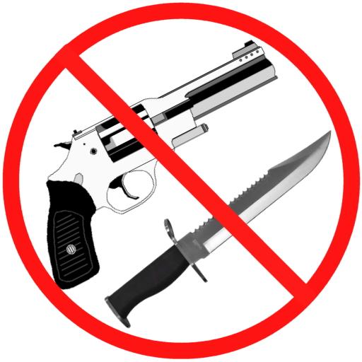 غیر قانونی اسلحہ کے خلاف مہم کامیابی سے جاری ہے، گزشتہ چند ماہ میں 58 افراد گرفتار ہو چکے ہیں، ڈی آئی جی دیامر