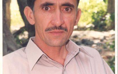 میرے روزنامچے کے اوراق سے ۔۔۔۔۔۔۔۔۔۔۔۔ صلاح الدین صالح  قطرے سے دجلہ بہاتے ہیں