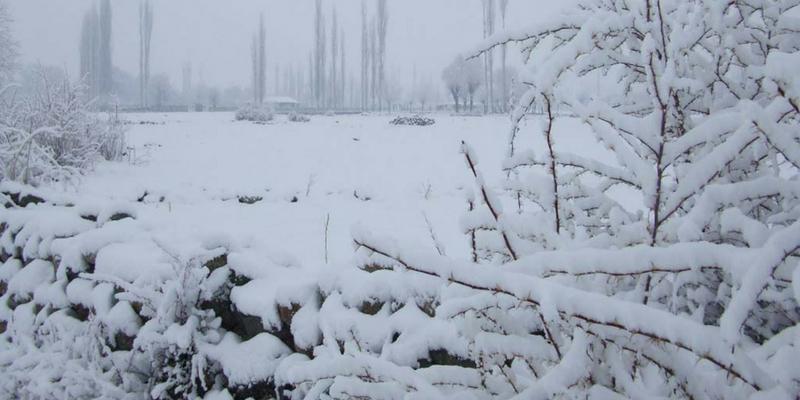 برف باری سے بالائی ہنزہ میں لوگوں کو مشکلات کا سامنا ہے، ڈپٹی کمشنر ہنزہ