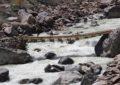 یاسین: نازبرنالے پرمعلق جیپ ایبل پل دو سال بعد بھی تعمیرنہ ہوسکا
