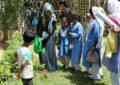 چیپس کے زیر اہتمام پاکستان بھر میں جنگلات کا دن جوش وخروش سے منایاگیا