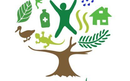 اکیس مارچ کو گلگت بلتستان میں جنگلات کا عالمی دن بھرپور طریقے سے منایا جائے گا: غلام محمد، فارسٹ کنزرویٹر