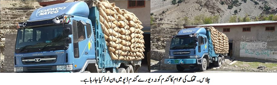 آئندہ تھک نیاٹ کا گندم کوٹہ علاقے میں موجود ڈپو میں پہنچا کر تقسیم کیا جائے، ڈپٹی کمشنر کی ہدایت