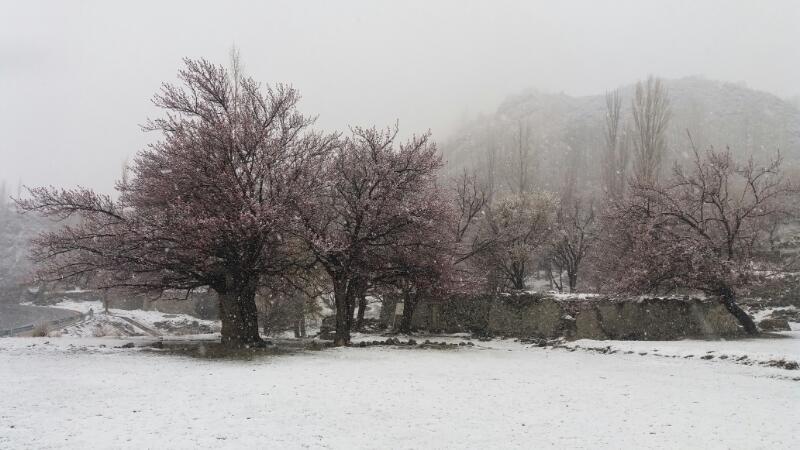 ضلع ہنزہ اور نگر میں بارش اور برفباری کا سلسلہ جاری