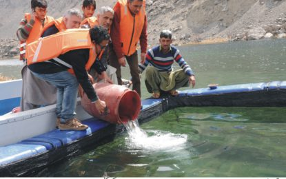 بلائنڈ لیک (جربہ ژھو) میں ٹراوٹ مچھلی کی نسل تیار کی جائے گی