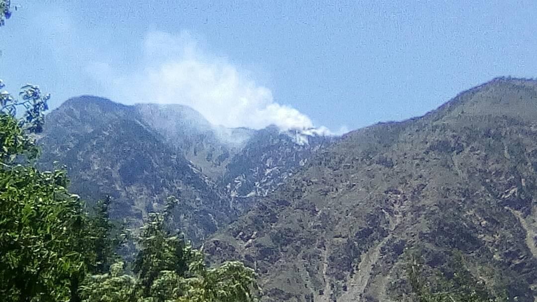 چترال: ژاژگا جنگل میں آگ لگنے سے سینکڑوں دیودار کے درخت جل کر خاکستر ہو گئے