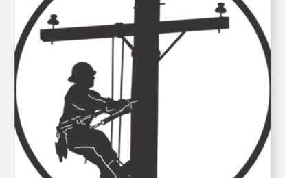 تحصیل یاسین میں گزشتہ چند سالوں کے دوران محکمہ برقیات کے چھ ملازمین جان کی بازی ہار چکے ہیں