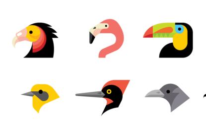 کیا پرندوں کی چونچیں اوزاروں کا کام کرتی ہیں؟