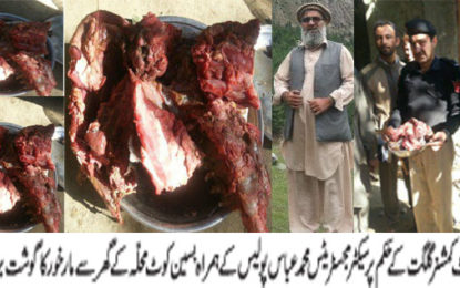 گلگت : بسین میں گھر پر چھاپہ مارخور کا10کلو گوشت برآمد، ملزمان فرار