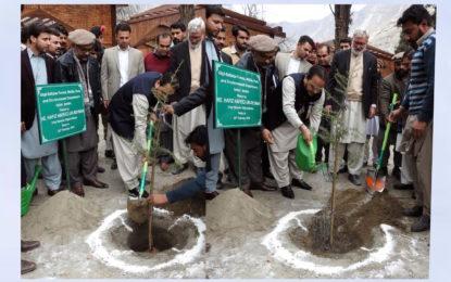گلگت بلتستان میںشجر کاری مہم کی آڈٹ ڈبلیو ڈبلیو ایف کرے گی