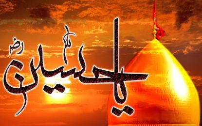 امام حسین منسبِانسانیت کے معراج کی ترجمانی فرماتے تھے، چھلت نگر میں منعقدہ تقریب سے علما کا خطاب