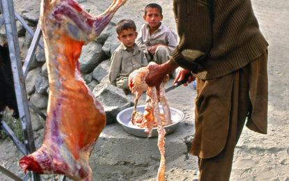 ماہ صیام کی آمد کے ساتھ ہی غذر میں قصاب شاہی نظام رائج، گیارہ بجے سے قبل دکانیںبند، چھوٹا گوشت ناپید