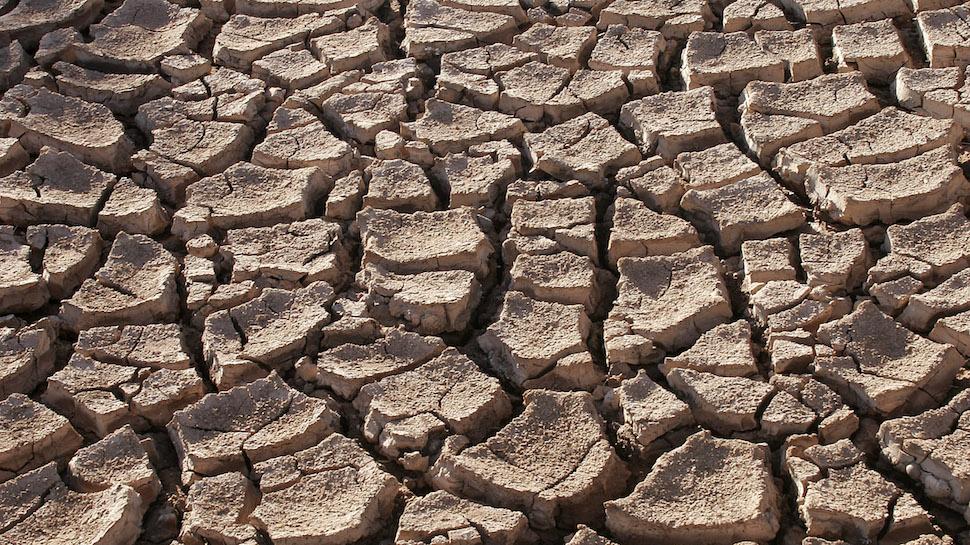 شگر کا گاوںسلدی خشک سالی کا شکار، فصلیں برباد