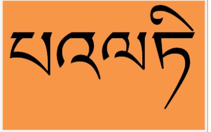 بلتی رسم الخط اور زبان کی پروموشن اور آگاہی کے سلسلے میں میراتھن ریس کا انعقاد