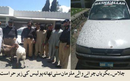 دیامر پولیس نے بکری چوروںکو گرفتار کرلیا، دو مسروقہ بکریاںبرآمد