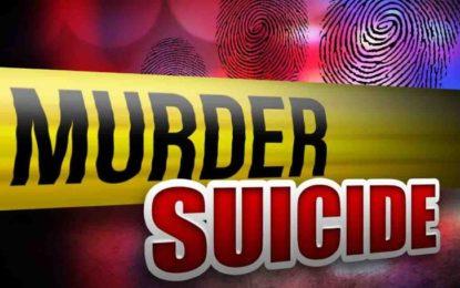 چترال کے بالائی علاقے گرم چشمہ میں شوہر نے بیوی کو قتل کرنے کے بعد خودکشی کر لی
