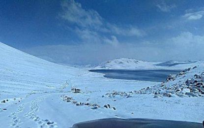 دیو سائی نیشنل پارک میںشدید برفباری، محکمہ جنگلی حیات کے ملازمین پھنس گئے