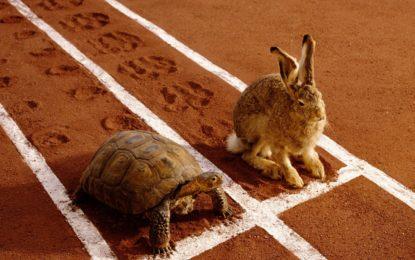 خرگوش اور کچھوے کی کہانی کا منظوم کھوار ترجمہ