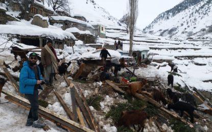 چلاس : مکان برفانی تودے کی زد میں آگیا، درجنوں مویشی دب کرہلاک