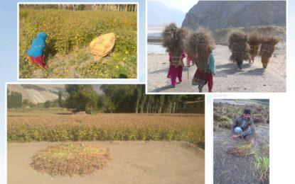 شگر میںکسان ڈے منایا گیا، کسانوں کی تنظیموںکے نمائندوںاور سیاسی و انتظامی شخصیات نے تقریب میںشرکت کی