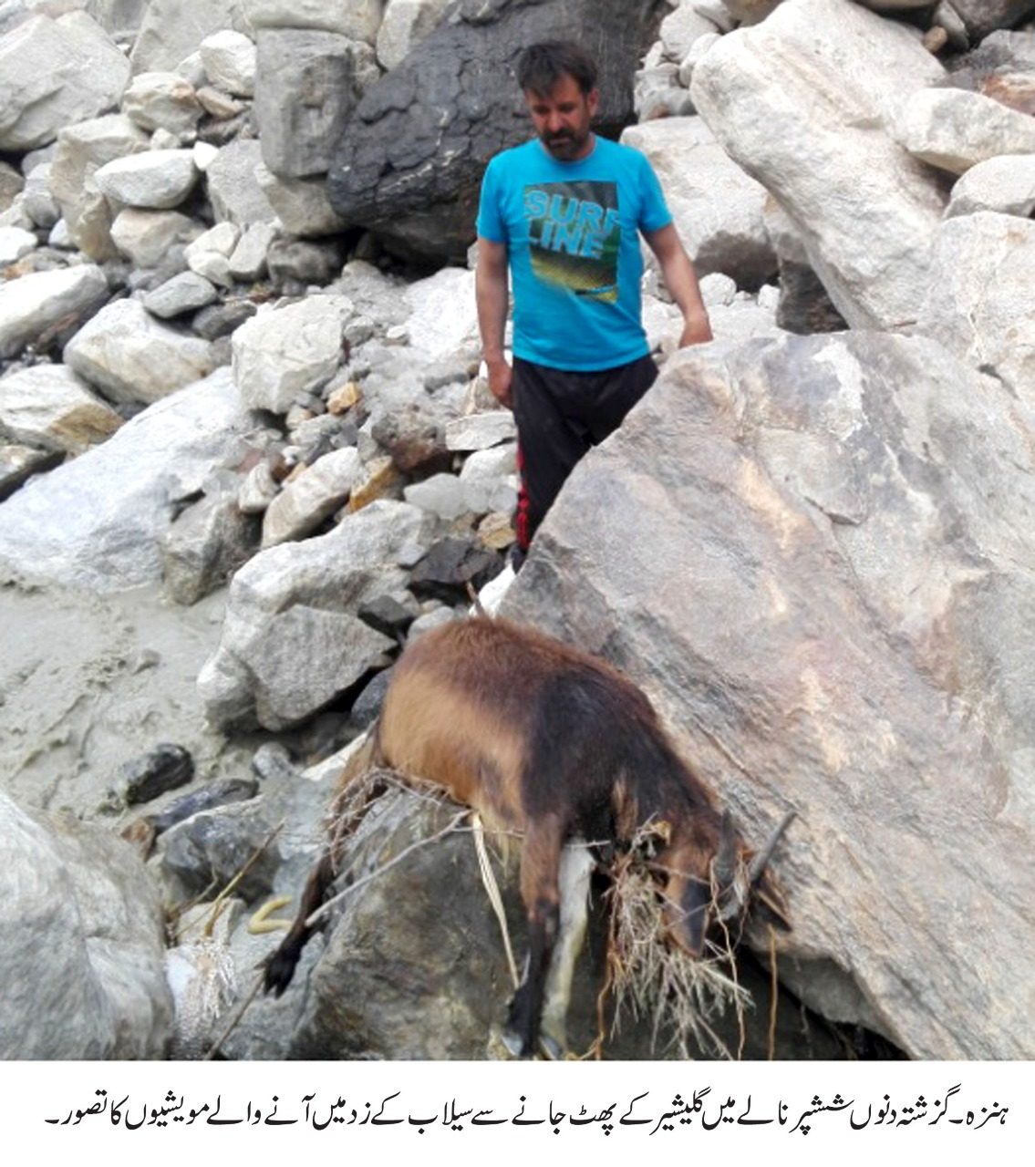 ہنزہ: ششپرنالے میں سیلاب غریب چرواہے کا درجنوں مال مویشی بہا لے گیا