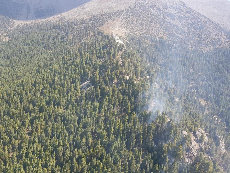داریل: جنگل میں لگی آگ پر تین روز بعد قابو پالیا گیا
